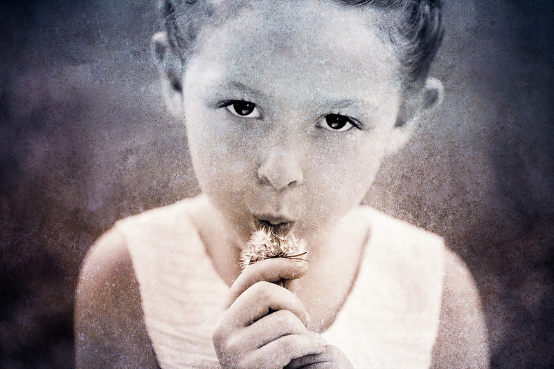 Dandelion child portrait overly Wausua Wisconsin Child Photographer